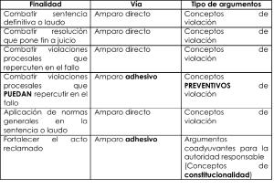 AmparoIndirectoT1