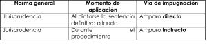 AmparoIndirectoT3